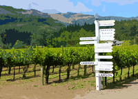 SONOMA WINE COUNTRY - ART