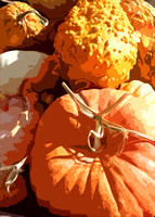 Pumpkins Gourds (art)