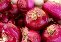 Red Onions 1