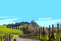 Carneros View (art)